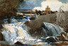 Winslow Homer / Casting in the Falls / 1889