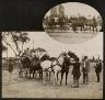 John N.Teunisson / Carriage racing / First half of the twentieth century