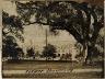 John N.Teunisson / Tulane University / First half of the twentieth century