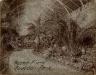 John N.Teunisson / Audubon Park / First half of the twentieth century