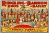 Unidentified / Ringling Bros. and Barnum & Bailey Combined Shows: The Greatest Wild Animal Display in History / 1924