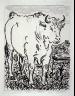 Pablo Picasso / Le boeuf (The ox), pl. 3, from the book Picasso/Eaux-fortes originales pour des textes de Buffon (Picasso/Original Etchings for the Texts by Buffon) (Paris: Martin Fabiani, 1942) / 1941 - 1942