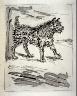 Pablo Picasso / Le chien (The dog), pl. 7, from the book Picasso/Eaux-fortes originales pour des textes de Buffon (Picasso/Original Etchings for the Texts by Buffon) (Paris: Martin Fabiani, 1942) / 1941 - 1942