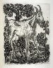 Pablo Picasso / La chèvre (The goat), pl. 8, from the book Picasso/Eaux-fortes originales pour des textes de Buffon (Picasso/Original Etchings for the Texts by Buffon) (Paris: Martin Fabiani, 1942) / 1941 - 1942