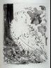 Pablo Picasso / Le pigeon (The pigeon), pl. 20, from the book Picasso/Eaux-fortes originales pour des textes de Buffon (Picasso/Original Etchings for the Texts by Buffon) (Paris: Martin Fabiani, 1942) / 1941 - 1942