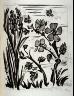 Pablo Picasso / L'abeille (The bee), pl. 22, from the book Picasso/Eaux-fortes originales pour des textes de Buffon (Picasso/Original Etchings for the Texts by Buffon) (Paris: Martin Fabiani, 1942) / 1941 - 1942