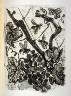 Pablo Picasso / La guêpe (The wasp), pl. 24, from the book Picasso/Eaux-fortes originales pour des textes de Buffon (Picasso/Original Etchings for the Texts by Buffon) (Paris: Martin Fabiani, 1942) / 1941 - 1942