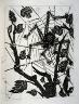 Pablo Picasso / L'araignée (The spider), pl. 26, from the book Picasso/Eaux-fortes originales pour des textes de Buffon (Picasso/Original Etchings for the Texts by Buffon) (Paris: Martin Fabiani, 1942) / 1941 - 1942