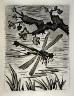 Pablo Picasso / La libellule (The dragonfly), pl. 27, from the book Picasso/Eaux-fortes originales pour des textes de Buffon (Picasso/Original Etchings for the Texts by Buffon) (Paris: Martin Fabiani, 1942) / 1941 - 1942