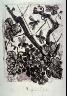 Pablo Picasso / La guêpe (The wasp), pl. 24, from the extra suite accompanying the book Picasso/Eaux-fortes originales pour des textes de Buffon (Picasso/Original Etchings for the Texts by Buffon) (Paris: Martin Fabiani, 1942) / 1941 - 1942