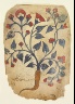 Iraq or Syria / Page from an Herbal Manuscript / 13th century