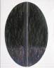 John P. Digesare / Oval Drawing / 1982