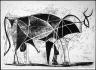 Pablo Picasso / The Bull (Le Taureau) / 1945