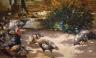 Max Rudolf Schramm-Zittau / Poultry Yard / not dated