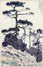 "Xu Beihong / Santipur ""Cryptomeria"" / 1940"