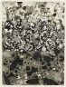 Jean Dubuffet / The Foot of the Wall / 1955