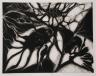 Janine Leroux-Guillaume / La Marche des scarabées / 1978