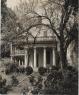 Robert Tebbs / Rosedown Plantation / circa 1929