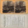 Seaver / Sailboats moored / ca. 1880