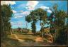 Frédéric Bazille / Landscape by the Lez River / 1870