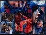 Thomas Hirschhorn / Blue Serie (Women Against War) / 2001