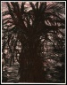 Jim Dine / A Tree Covered with Rust / 1981
