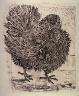 Pablo Picasso / Le dindon (The turkey), pl. 19, from the book Picasso/Eaux-fortes originales pour des textes de Buffon (Picasso/Original Etchings for the Texts by Buffon) (Paris: Martin Fabiani, 1942) / 1941 - 1942