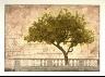 David Smith-Harrison / Lemon Tree / Late 20th century