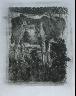 """Pablo Picasso / """"L'âne (The Donkey),""""  in the book Histoire naturelle:  Picasso eaux-fortes originales pour les textes de Buffon (Picasso's Original Etchings for Buffon's Text)  (Paris: Martin Fabiani, 1942) / 1936"""