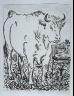 """Pablo Picasso / """"Le b?uf (The Ox),""""  in the book Histoire naturelle:  Picasso eaux-fortes originales pour les textes de Buffon (Picasso's Original Etchings for Buffon's Text)  (Paris: Martin Fabiani, 1942) / 1936"""