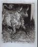 """Pablo Picasso / """"Le taureau (The Bull),""""  in the book Histoire naturelle:  Picasso eaux-fortes originales pour les textes de Buffon (Picasso's Original Etchings for Buffon's Text)  (Paris: Martin Fabiani, 1942) / 1936"""