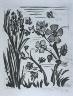 """Pablo Picasso / """"L'abeille (The Honeybee ),""""  in the book Histoire naturelle:  Picasso eaux-fortes originales pour les textes de Buffon (Picasso's Original Etchings for Buffon's Text)  (Paris: Martin Fabiani, 1942) / 1936"""