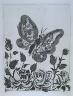 """Pablo Picasso / """"Le papillon (The Butterfly),""""  in the book Histoire naturelle:  Picasso eaux-fortes originales pour les textes de Buffon (Picasso's Original Etchings for Buffon's Text)  (Paris: Martin Fabiani, 1942) / 1936"""