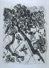 """Pablo Picasso / """"La guêpe (The Wasp),""""  in the book Histoire naturelle:  Picasso eaux-fortes originales pour les textes de Buffon (Picasso's Original Etchings for Buffon's Text)  (Paris: Martin Fabiani, 1942) / 1936"""