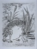"""Pablo Picasso / """"Le crapaud (The Toad ),""""  in the book Histoire naturelle:  Picasso eaux-fortes originales pour les textes de Buffon (Picasso's Original Etchings for Buffon's Text)  (Paris: Martin Fabiani, 1942) / 1936"""