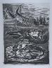 """Pablo Picasso / """"Les grenouilles (The Frogs),""""  in the book Histoire naturelle:  Picasso eaux-fortes originales pour les textes de Buffon (Picasso's Original Etchings for Buffon's Text)  (Paris: Martin Fabiani, 1942) / 1936"""