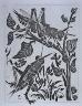 """Pablo Picasso / """"La sauterelle (The Grasshopper ),"""" illustration in the book Histoire naturelle:  Picasso eaux-fortes originales pour les textes de Buffon (Picasso's Original Etchings for Buffon's Text)  (Paris: Martin Fabiani, 1942) / 1936"""