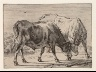 Paul Potter / Cattle / 1650