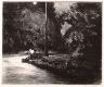 Edward Hopper / Night in the Park / 1921