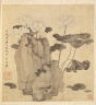 Chen Hongshou / Paintings after Ancient Masters: Lotus and Rocks / 1598-1652