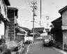 Thomas Struth / Hillside Road, Kiwado / 1996