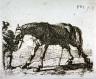 Pieter van Laar / Le cheval qui pisse / 16th - 17th century