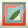 Frank Stella / River of Ponds IV / 1971