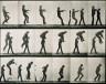 Eadweard J. Muybridge / Jumping; over boy's back (leap-frog) / ca. 1884-1887