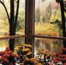 Edward Steichen / Steichen's pond from the porch of his house / 1957