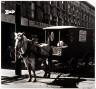 N. Jay Jaffee / Horse and Wagon, Sutter Avenue, (East New York) Brooklyn, New York / 1950