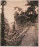 Major Francis Gresley / Tower on the Lower Walk, Winterdyne / ca. 1861-80