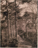 Major Francis Gresley / Path in the woods with figures posing / ca. 1861-80