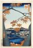Utagawa Hiroshige / A View of Maples near Tekona Shrine at Mama / circa 1856-1858