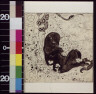 Oliver Herford / The mongoose / 1899?